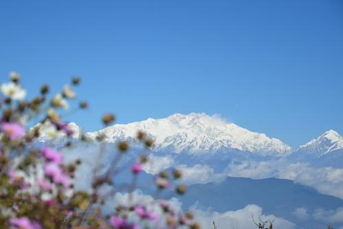 travel autumn sky india plant mountains flower colour tree tourism nature beauty horizontal forest trekking trek landscape outdoors nationalpark asia tour indian hill reserve adventure trail bloom destination range preserve bengal himalayas scenics himalayan enroute westbengal sandakphu kanchenjunga kangchenjunga jannu pandim tonglu kumbhakarna thesleepingbuddha कञ्चनजङ्घा কাঞ্চনজঙ্ঘা