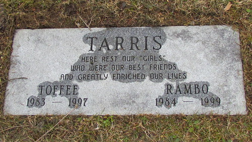 "pet cemetery: ""Toffee"" and ""Rambo"" by William Keckler"