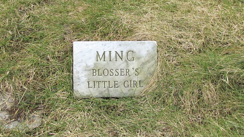 "pet cemetery: ""Ming. Blosser's Little Girl"" by William Keckler"