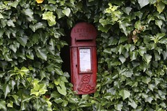 post box, letter box, green, lighting,