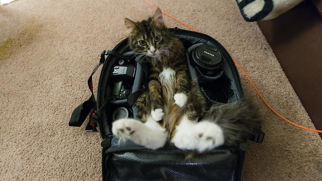 Packed bag, go!