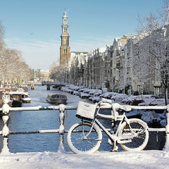 An early morning winter treat in Amsterdam