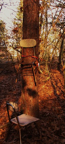 pine oak chairs teenagers teens northcarolina litter creativecommons vandalism teenangst cumberlandcounty hopemills schoolchairs rustychairs baldwinwoods baldwinelementaryschool cumberlandcountyschools scottymcpherson