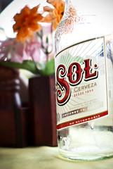 Sol Forever!