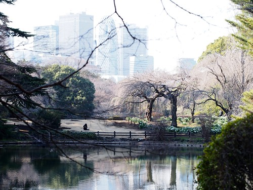 Shinjuku Imperial Garden of today
