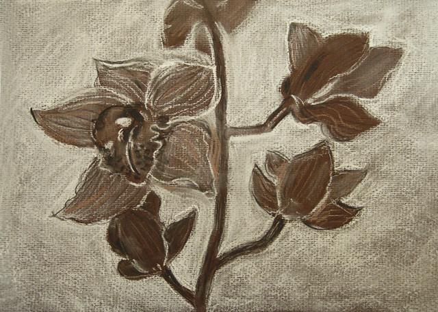 Орхидея пастель 4.13.13
