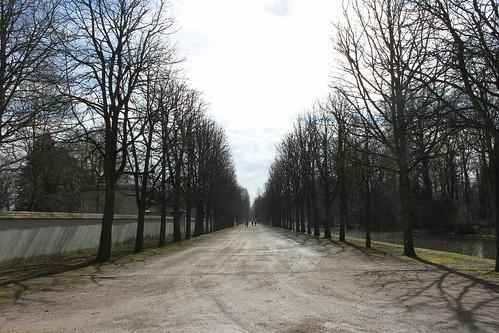 2013.03.09.260 - SCHWETZINGEN - Schwetzinger Schlossgarten