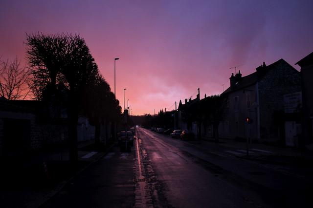 Rose de soir (dimanche 17 mars 2013, 18:58:51).