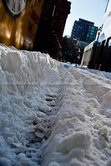 Snow Rut (1)