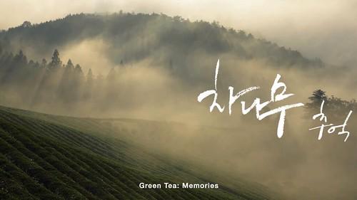Boseong-Green-Tea-Festival.jpg