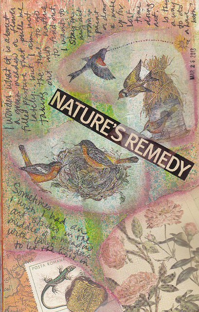 natures-remedy