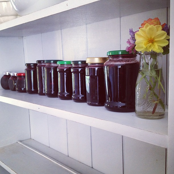 And then there was jam. Lots of jam. Thanks for your help! @_chrane_ #rosellas #homemade