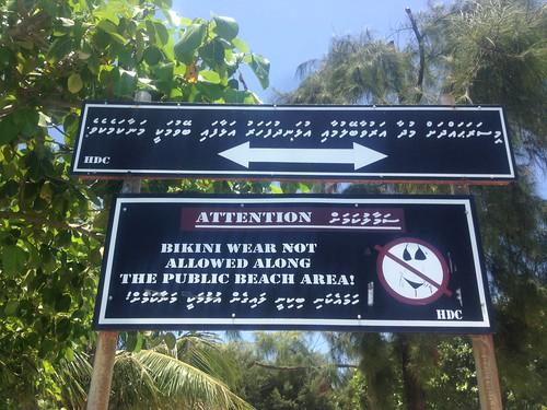 Adi's Maldivian Adventure4