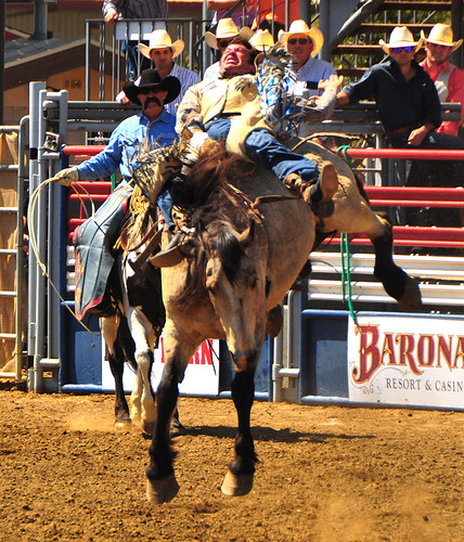 california horse cowboy lakeside western rodeo mustang southerncalifornia rider sportsaction bronc oldwest sportsphotography exertion broncriding lakesiderodeo barebackbroncriding