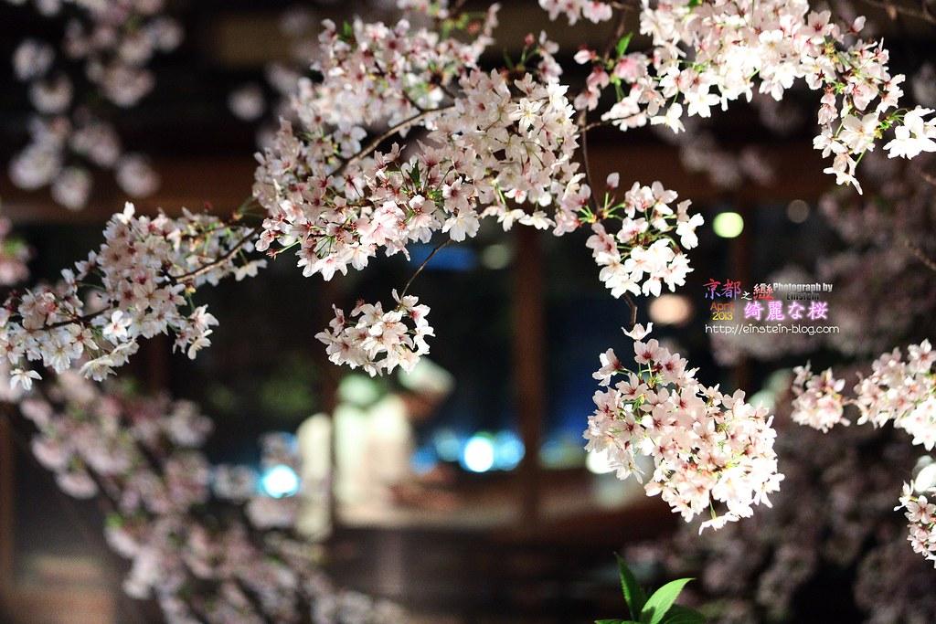 018_2013-04-05-17h55m28IMG_2830