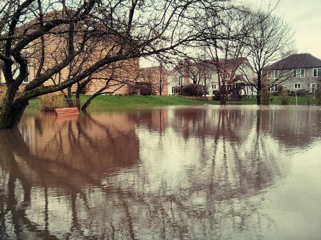 park after rain 2
