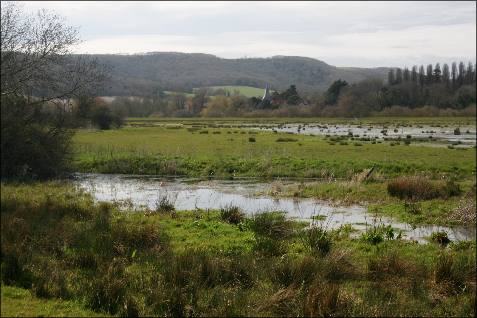 Water meadows near Amberley With Bury church visible in the distance