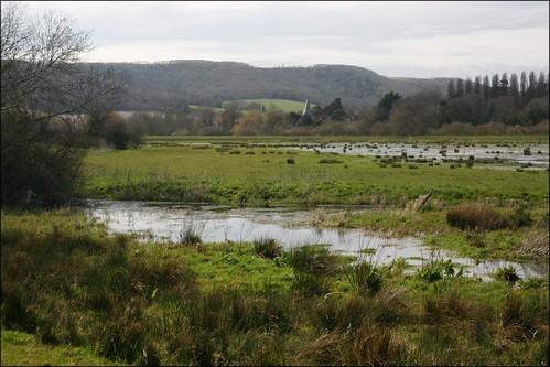 Water meadows near Amberley