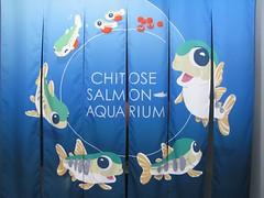 Chitose Salmon Aquarium