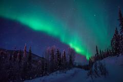[フリー画像素材] 自然風景, オーロラ, 夜空 ID:201302180800