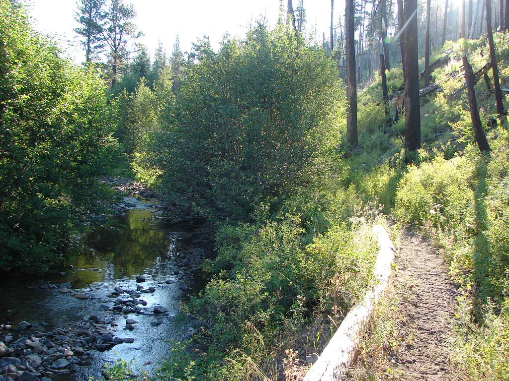 Mill Creek along the Twin Pillars Trail