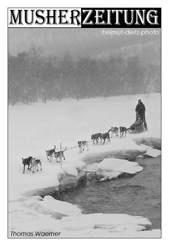 Thomas Waerner, Norway, at the longest sled dog race in Europe: close to checkpoint Levajok