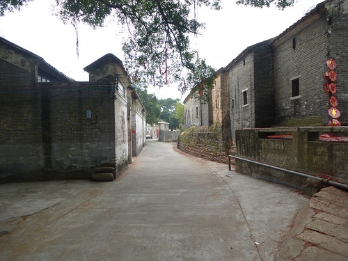 Guangdong13-Zhaoqing-Licha Cun (62)