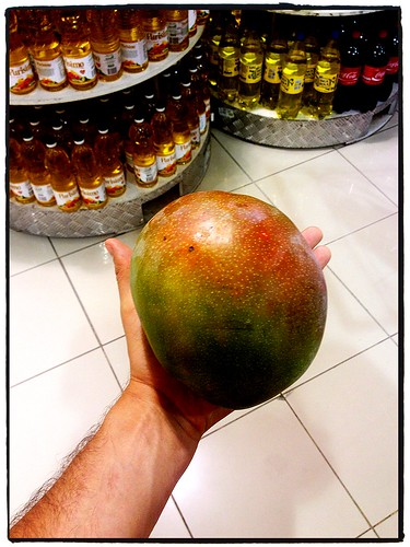 Largest Mango I've Ever Seen by tf_82