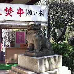 狛犬探訪 蒲田八幡 子連れでない