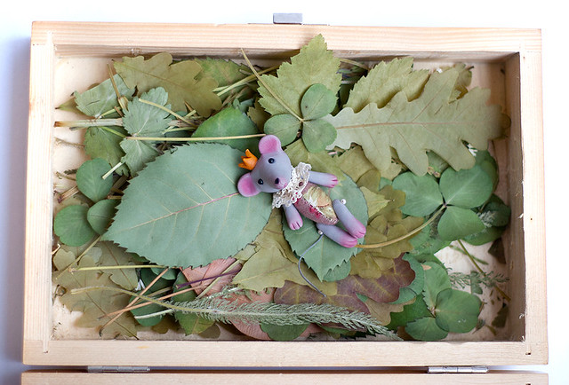 mouse on herbarium