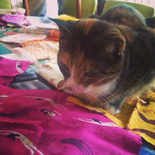 I like mermaids, mummy! #cats #quilting #fabric
