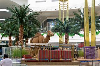 Centre commercial Deira City Center