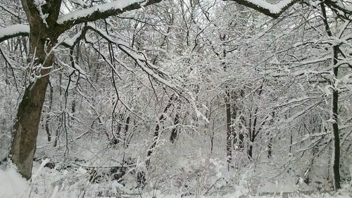 county winter snow creek landscape franklin kansas middle