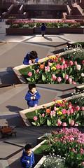 恵比寿ガーデンプレイスにて 2013/4/1