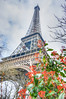 Red Eiffel flowers