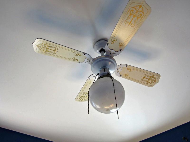 House green apples - Little max ceiling fan ...