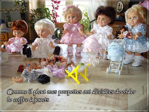 La petite vie de mes Baby face (la blessure ) - Page 2 8616815756_5fd35c75a2