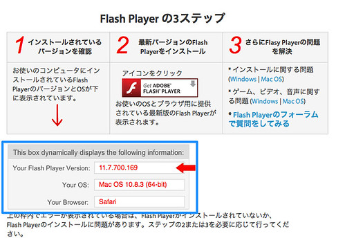 Flash player-4