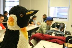 hackNY spring 2013 student hackathon