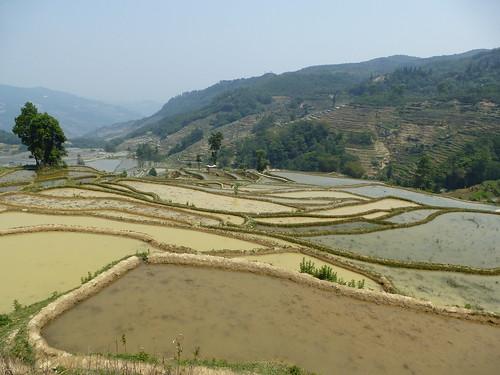 Yunnan13-Yuanyang 13-Quanfuzhoang (6)