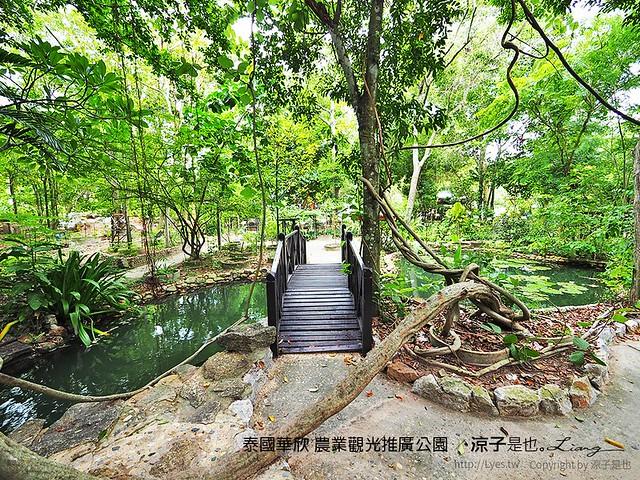 泰國華欣 農業觀光推廣公園 44