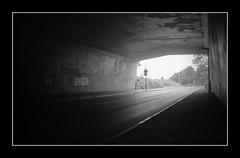 Under the Bridge [Olympus OM10]