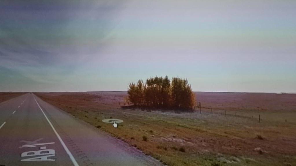 Trees on the Prairie. #ridingthroughwalls
