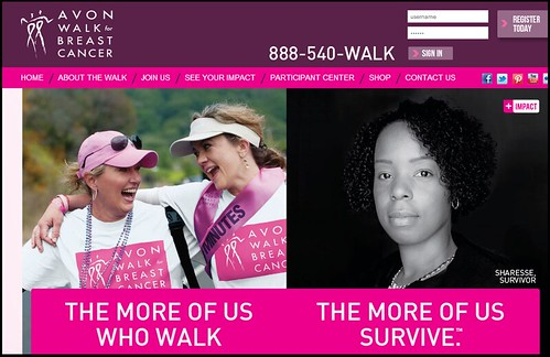 Joel Schlessinger MD donates to the Avon Walk for Breast Cancer