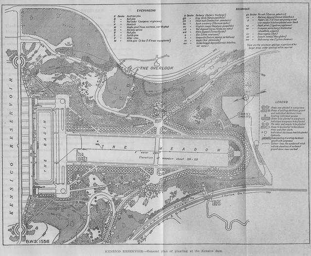 Report 1920 Planting Plan