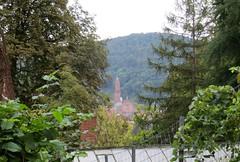Heidelberg Philosopher's Walk area