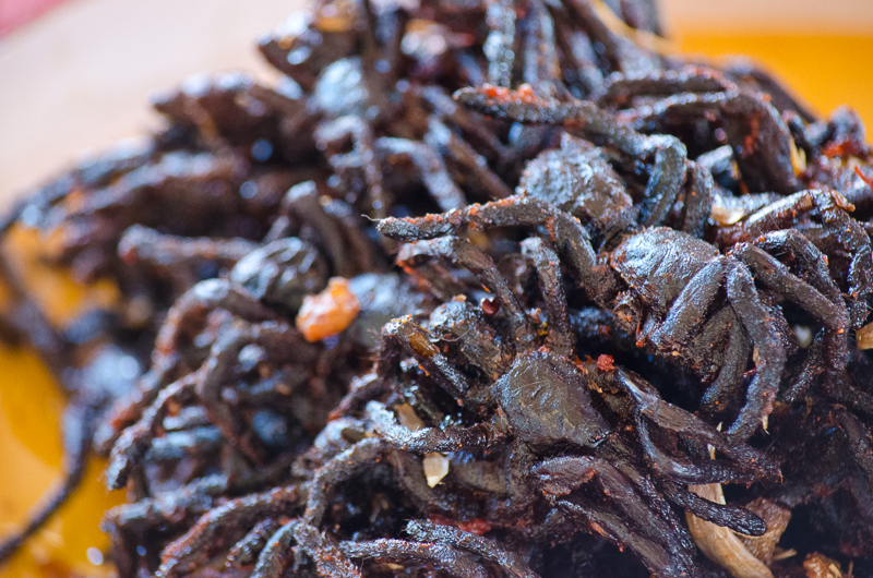 BBQ'd Cambodia Tarantula