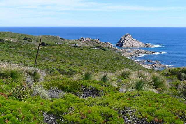 The beach along the Capr To Cape Track from Dunsborough to Yallingup. The rock in the far left is called Sugarloaf Rock, as it resembles a lump of sugar.