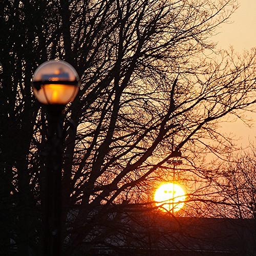 trees england sunsets berkhamsted hertfordshire shenstone sonyslta37