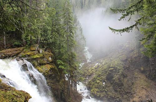 river washington falls pema nooksack chodron